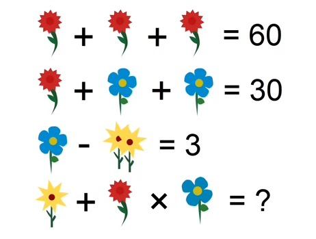 flower riddle
